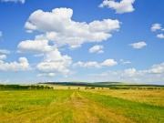 Ferma cu teren agricol, situata la nord-vest de orasul Lugoj