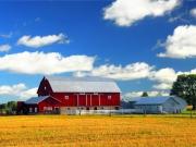 Teren agricol, calitatea 2, 70% compact,15 km nord de Timisoara